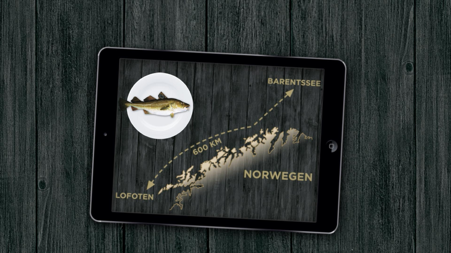 Orange Council - multimedia-campaign to launch NORGE products like the Skrei